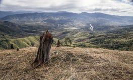 Bergigt kalhuggit landskap i Vietnam arkivbild