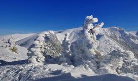Bergigt landskap för vinter Arkivbilder