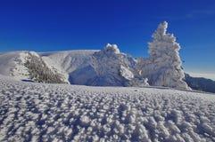 Bergigt landskap för vinter Royaltyfri Fotografi