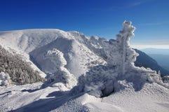 Bergigt landskap för vinter Royaltyfria Foton