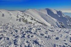 Bergigt landskap för vinter Royaltyfria Bilder