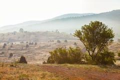 Bergigt område som täckas med ljus ogenomskinlighet Morgonlandskap i berg royaltyfri fotografi