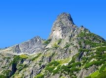 BergJastrabia veza i höga Tatras Arkivbild