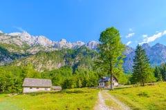 Bergkabin i europeiska fjällängar, Robanov kot, Slovenien arkivfoto