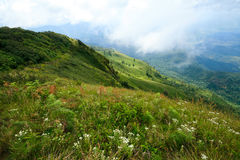Bergketen Stock Afbeelding