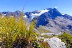 Bergketen rond Arthurs-Pas stock afbeelding
