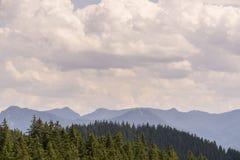 Bergketting achter het bos stock afbeelding