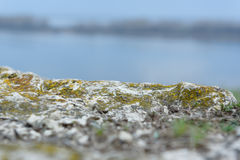 Bergklippa och härlig Volga River mustasch Royaltyfria Foton