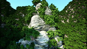 Bergklippen met bomen Luchtcameralengte Het landschap van de fantasie stock footage