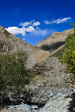 Bergkloof met groene bomen en blauwe hemel in Himalayagebergte, Ladak Royalty-vrije Stock Afbeelding