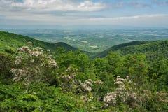 Berglager, blåa Ridge Mountains och Shenandoah Valley - 3 Arkivfoto