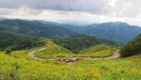 Berglagersikten med guling blommar i nordligt av Thailand Royaltyfria Foton
