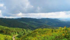 Berglagersikten med guling blommar i nordligt av Thailand Arkivfoton