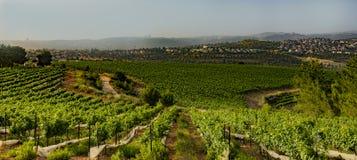 Berglandbouw dichtbij Jeruzalem royalty-vrije stock foto's