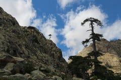 Berglandschaft, Corse, Frankreich Lizenzfreie Stockbilder