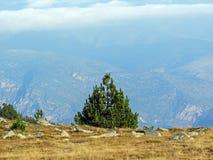 Berglandschaft in den französischen Pyrenäen nahe Pic du Canigou, regionaler Park der katalanischen Pyrenäen, Frankreich lizenzfreie stockfotografie
