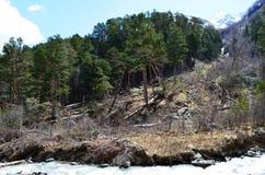 Berglandschaft des Kaukasus Die Konsequenzen einer Lawine Stockbild