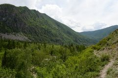 Berglandschaft durch den Fluss Chuya, Altai-Republik, Sibirien, Russland stockbild