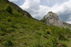 Berglandschaft durch den Fluss Chuya, Altai-Republik, Sibirien, Russland lizenzfreie stockbilder