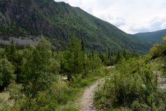 Berglandschaft durch den Fluss Chuya, Altai-Republik, Sibirien, Russland stockfoto