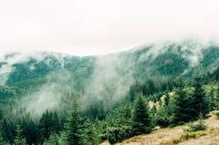 Berglandschaft, ein Platz im Herbstnebel Lizenzfreies Stockfoto