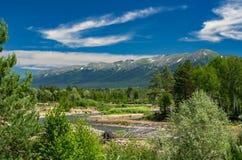 Berglandschaft an einem sonnigen Sommertag Blauer Himmel, weiße Wolken, Fluss-Spritzen, fließend über Felsen, Evergreens und Bäum lizenzfreie stockfotos