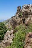 Berglandschaft, Gamla-Naturreservat in Israel Stockfoto