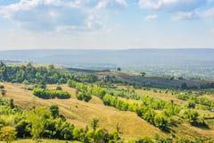 Berglandschaft greeb Baum-Morgenzeit stockfotos