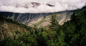 Berglandschaft im Freien mit Kiefernwald Lizenzfreie Stockfotografie