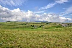 Berglandschaft im Sommertalgrün mit Blumen Lizenzfreies Stockfoto