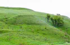 Berglandschaft mit Bäumen, steilen Steigungen und schönem Himmel lizenzfreies stockbild
