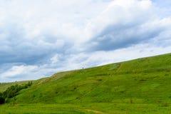 Berglandschaft mit Blumenfeld Stockfotos