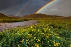 Berglandschaft mit einem Regenbogen über Blumen Lizenzfreies Stockfoto