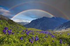 Berglandschaft mit einem Regenbogen über Blumen Lizenzfreies Stockbild