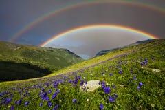 Berglandschaft mit einem Regenbogen über Blumen Stockfoto