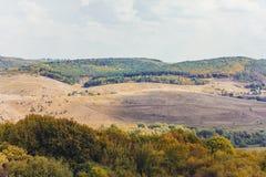 Berglandschaft mit Feldern und Wald Stockfotos