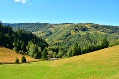Berglandschaft mit grünem Gras, Tannenwald und Dorf Stockbild