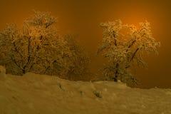 Berglandschaft mit Schnee, Schnee bedeckte Bäume Lizenzfreie Stockfotografie