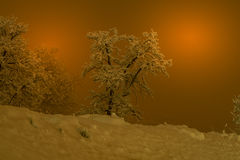 Berglandschaft mit Schnee, Schnee bedeckte Bäume lizenzfreie stockbilder