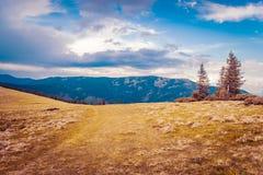 Berglandschaft mit Wald und blauem Himmel Stockfoto