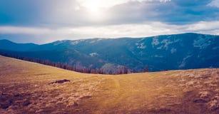 Berglandschaft mit Wald und blauem Himmel Stockbilder