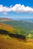 Berglandschaft mit Wald und Wiese Stockfotos
