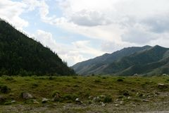 Berglandschaft nahe dem Katun-Fluss, Altai-Republik, Sibirien, Russland stockbilder