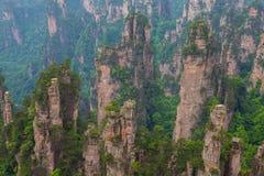 Berglandschaft Nationalparks Zhangjiajie Stockfotos