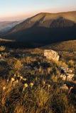 Berglandschaft w?hrend der goldenen Stunde stockbild