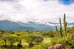 Berglandschap in afdeling Santander in de Andes van Colombia stock afbeeldingen
