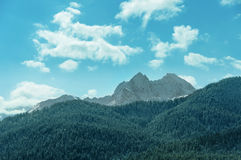 Berglandschap in Arkhyz Royalty-vrije Stock Fotografie