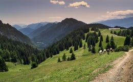 Berglandschap in de Alpen dicht bij Ponte Arche, Italië stock afbeelding