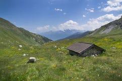 Berglandschap in de Alpen met bloemen bij Pforzheimer-Hut, Oostenrijk Stock Afbeelding