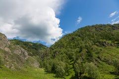 Berglandschap in de vallei van de samenloop van de rivieren van Katun en Maly Yaloman-, Altai, Rusland stock afbeelding